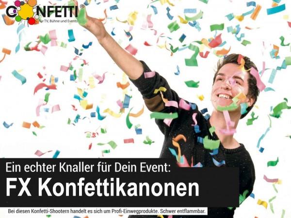 Konfetti_Regen_Bundestag_Gruene_Lammert